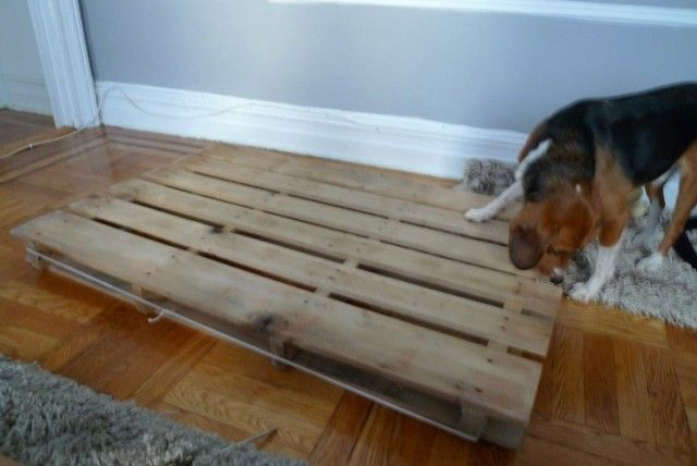 pallet dog bed instructions create and simplify pinterest