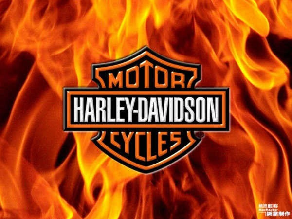 flames hd logo pinterest harley davidson logo images harley davidson logos and emblems