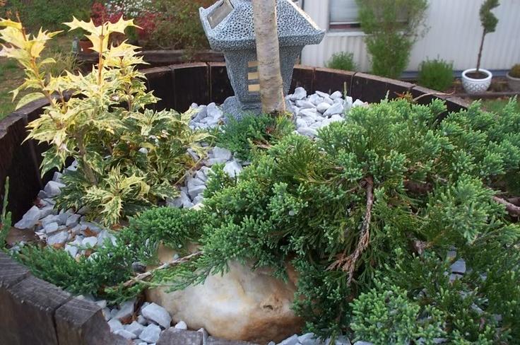 Evergreen japanese miniature garden miniature gardens for Miniature japanese garden