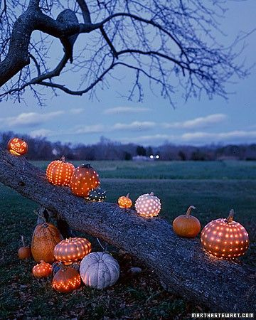 This idea is so cool....drill holes in pumpkins and let them light up the night
