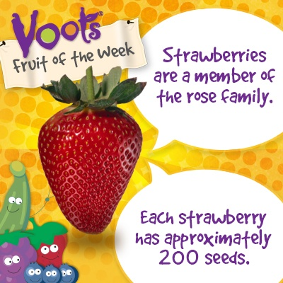 Interesting facts about the strawberry voots fruit for Interesting facts about strawberries