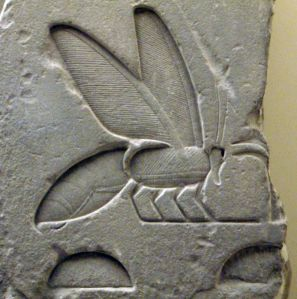 Egyptian Hieroglyph: Bee