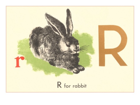 r is for rabbit  is for Rabbit .