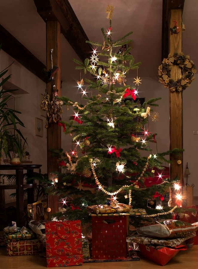 christmas interior decor christmas trees pinterest