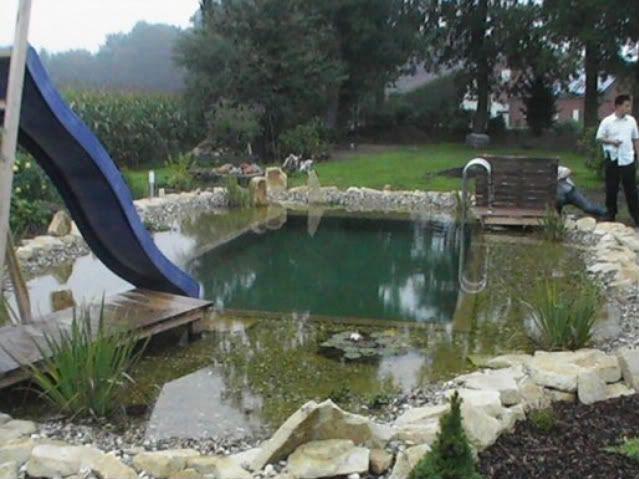 30 Amazing Swimming Pools Look Like Ponds