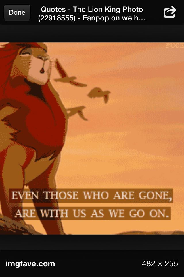Best Lion King Quotes Quotesgram. Tattoo Quotes Deep Meaning. Hurt Quotes Brainy Quotes. Work Determination Quotes. Morning Quotes Naughty