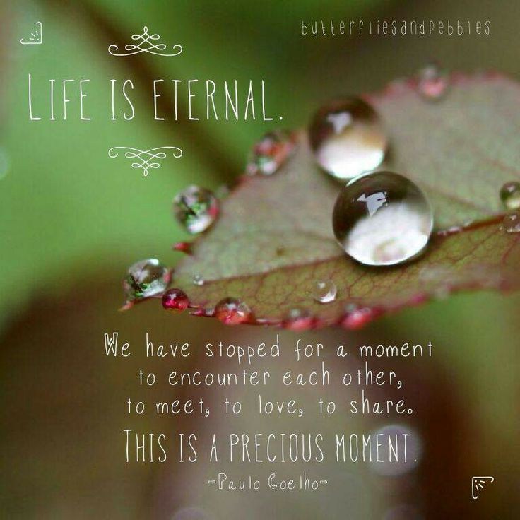 life is eternal inspiring quotes pinterest