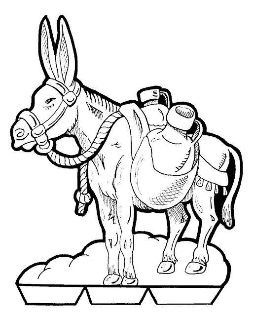 Similiar Balaam Donkey Color Keywords