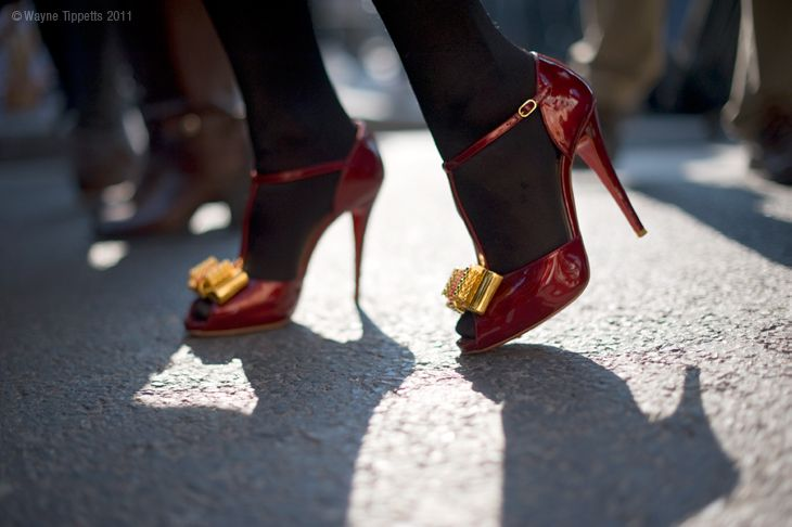Shoe Zoo - The Red Shoes