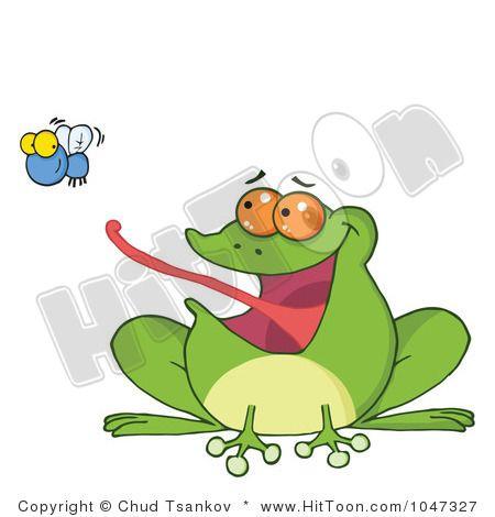 как лягушка ловит мух