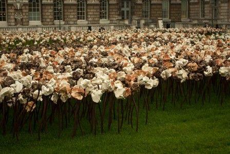 Fernando Casasempere's hundreds of ceramic flowers at London's Somerset House