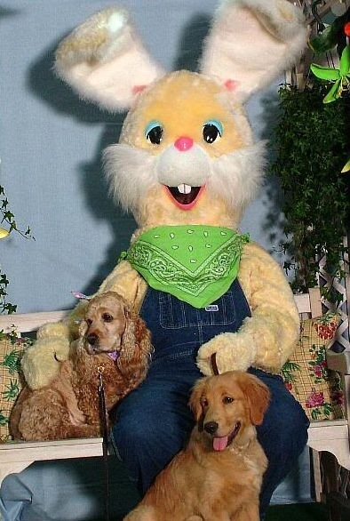 Ahh, here's Hillbilly Easter Bunny posing for a picture with his two dogs -- actually the dogs belong on the farm but now studying to be a farmer dude #easter #bunny