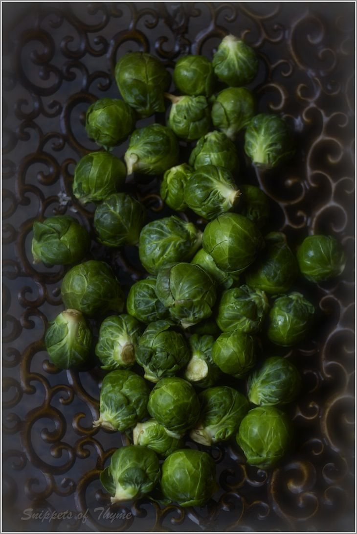 Thyme: Roasted Brussel Sprouts with Cranberries and Balsamic Vinegar ...