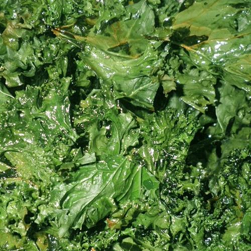Baked Crispy Kale Chips Recipe | Yummy Stuff | Pinterest
