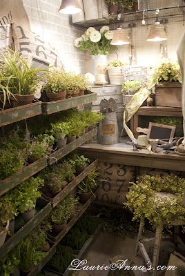 When I have a potting shed, I am going to make it look like this!