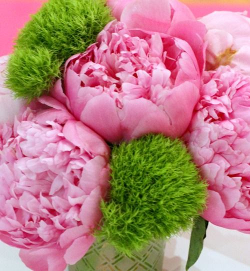 pink peony flowers project nursery centerpiece bouquet pinterest