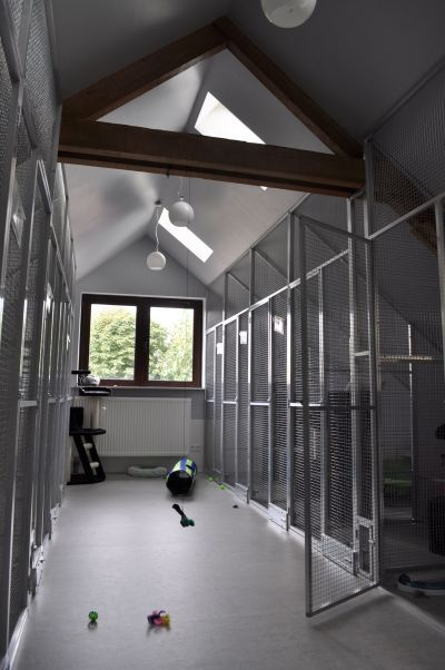 Interior design of 'Snoet', dog grooming and cat hotel, Boechout (BE).