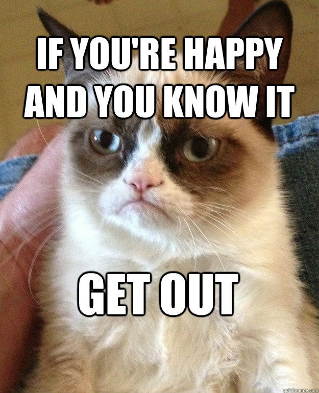 Grumpy Cat Birthday Quotes Image Sense