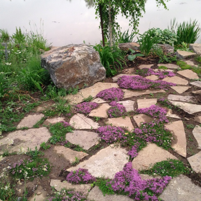 Backyard Patio Ideas Flagstone