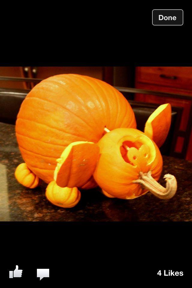 Elephant pumpkin elephants are epic pinterest for How to carve an elephant on a pumpkin