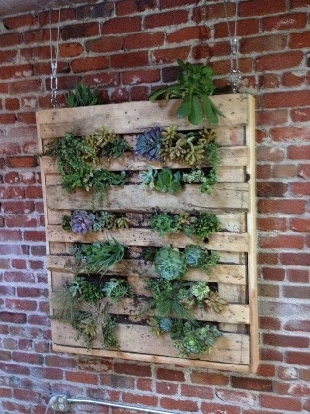 Diy vertical garden with pallet sage saffron pinterest for Vertical pallet garden