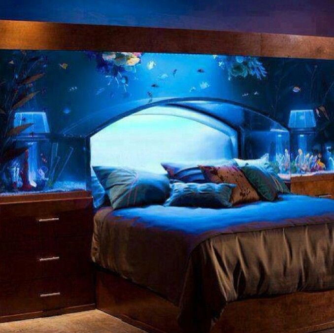 Awesome fish tank bed for my kimmie pinterest for Awesome fish tanks