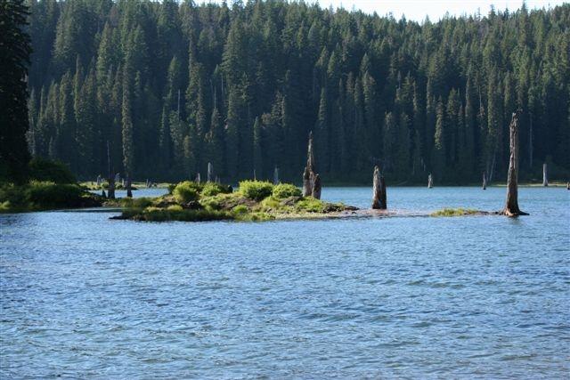 Goose Lake Wa Goose Lake