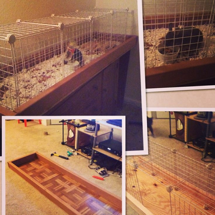 Diy rabbit cage home pinterest for Easy diy rabbit cage budget