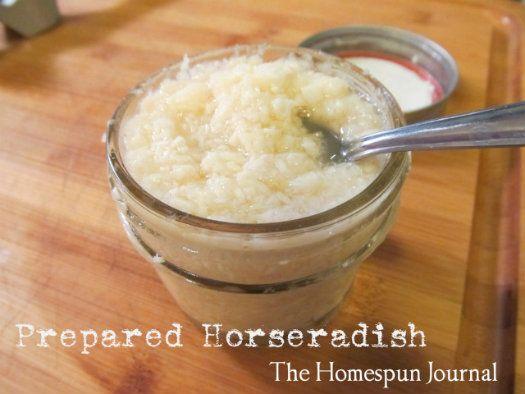 How to: Prepared Horseradish from The Homespun Journal