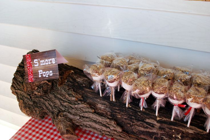 S'mores Pops on Display in Tree Trunk Stand - so creative and could work for so many party themes!