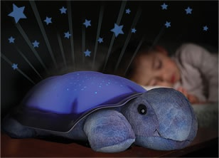Cloud B Twilight Turtle ... Both boys have this and still use it every night:)