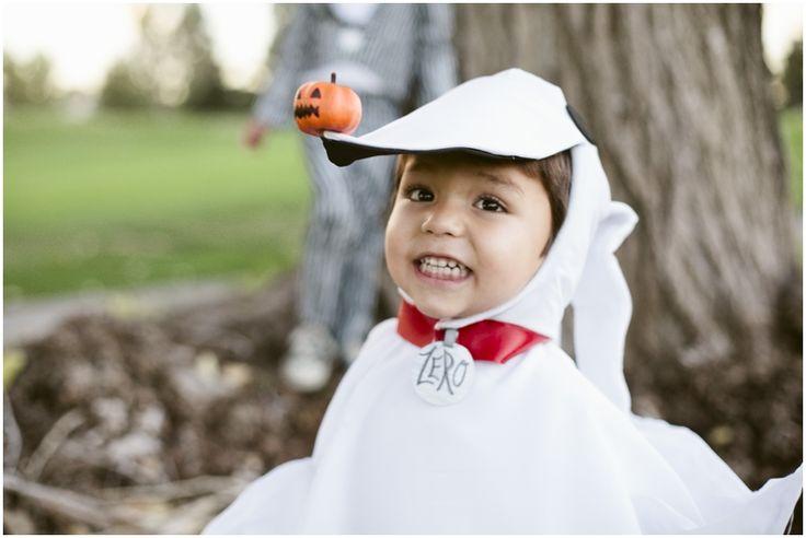 Jack, Zero, and Scary Teddy: Halloween » sara lucero : blog