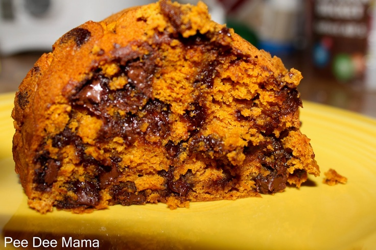 Chocolate Chip Pumpkin Spice Cake | Tales of a Pee Dee Mama | Pintere ...