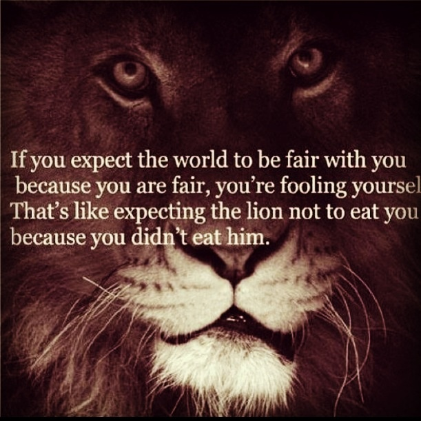 Lion Quotes And Sayings Lion Quotes And Saying...