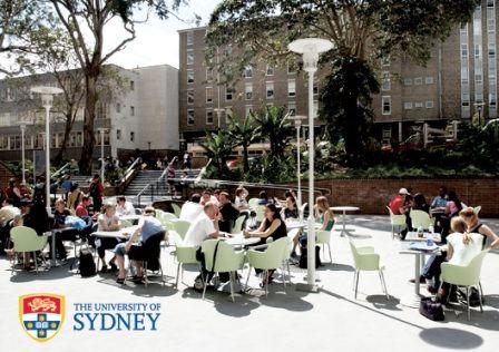 Public Health taylor college sydney university