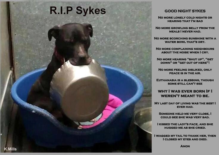 R.I.P SYKES