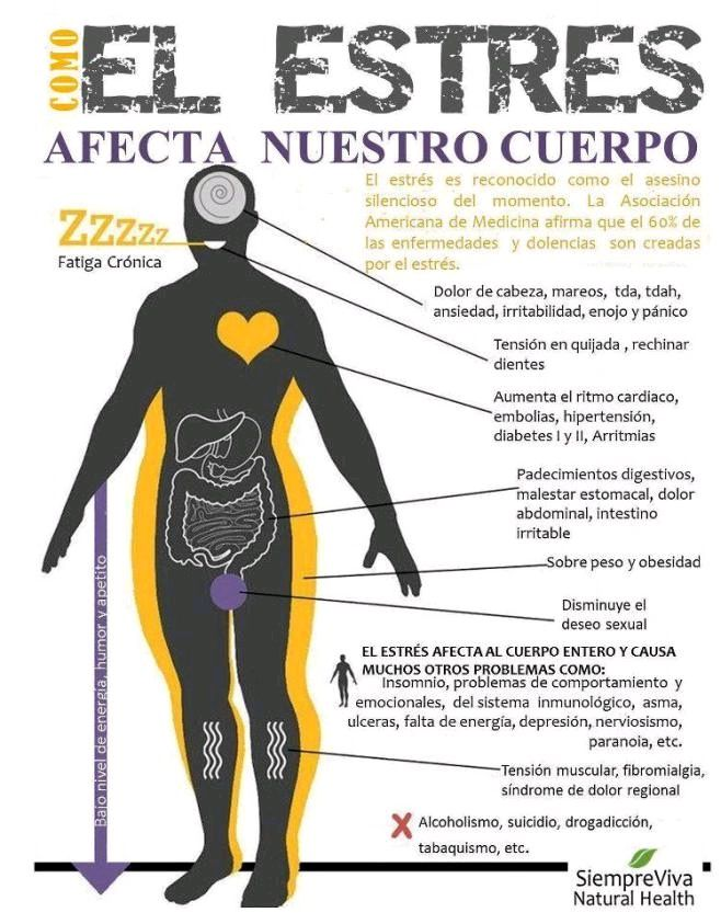 Interesante #infografía sobre como el #estrés afecta a nuestro cuerpo. #salud