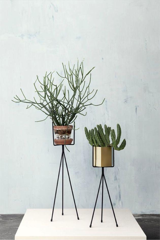 trépied métal plantes