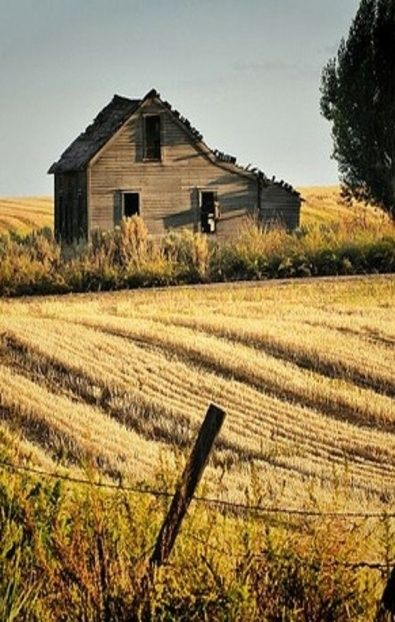 Old farm house at the end of the field forsaken pinterest Old country farmhouse