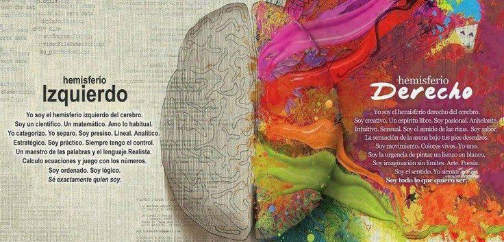Hemisferios del cerebro varios pinterest for Amiguitos del jardin