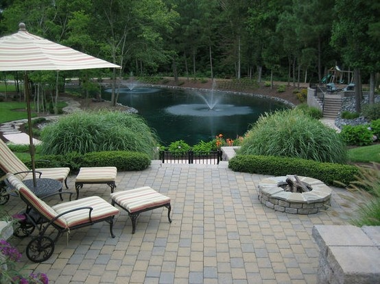 Nice backyard with water features my big backyard for Large pond design