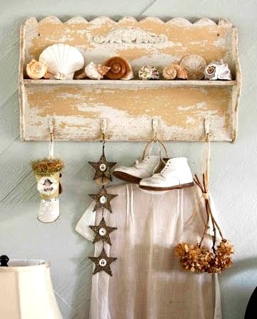 30 seashell collection display ideas beachy pinterest for Ideas for displaying seashells