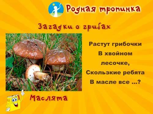 Аппликации детей гриб