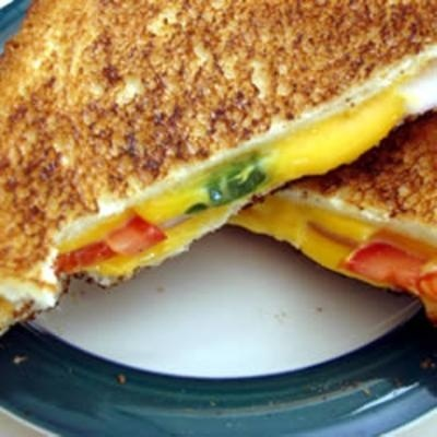Spicy Grilled Cheese Sandwich | love it! | Pinterest