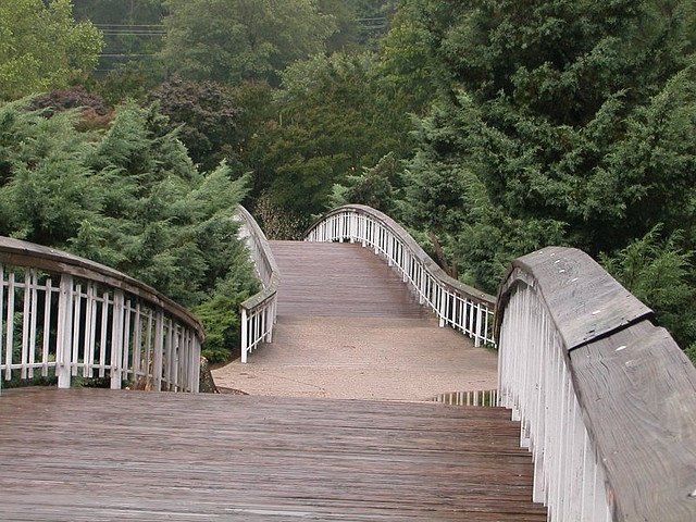 The walkways at Pullen Park