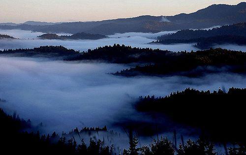 9-20-11 web cam of Mendocino CA. Love the fog.