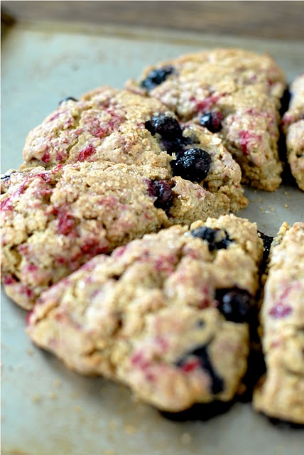 Baby Food Recipe: Blueberry Oats and Yogurt picture