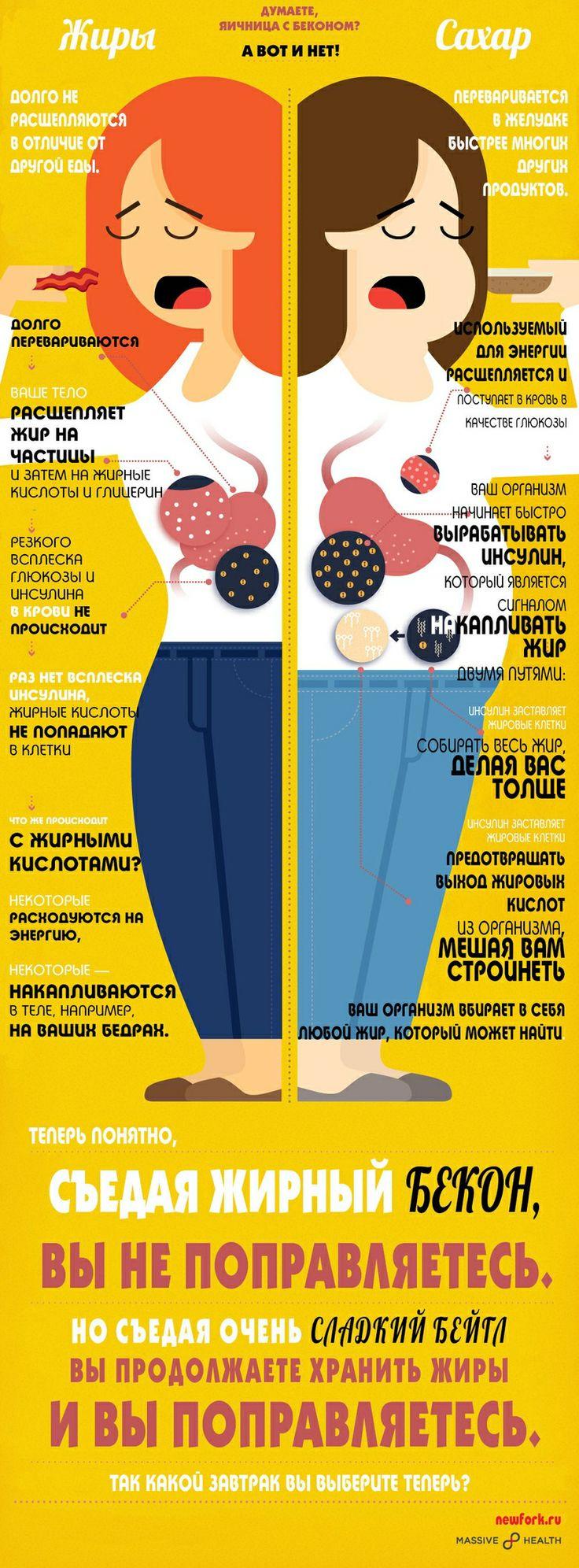 диеты правильное питание меню для похудения