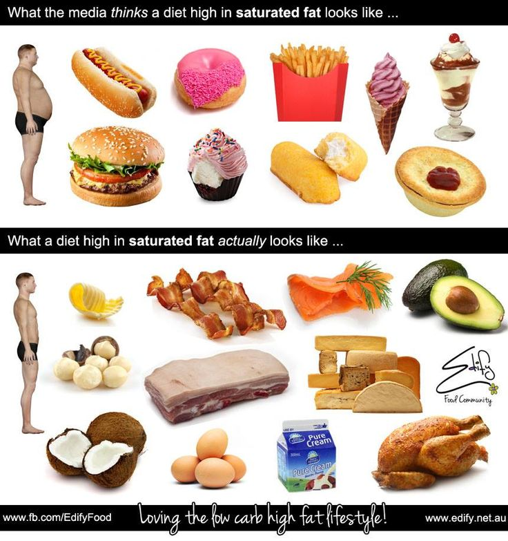 high fat and low fat diets