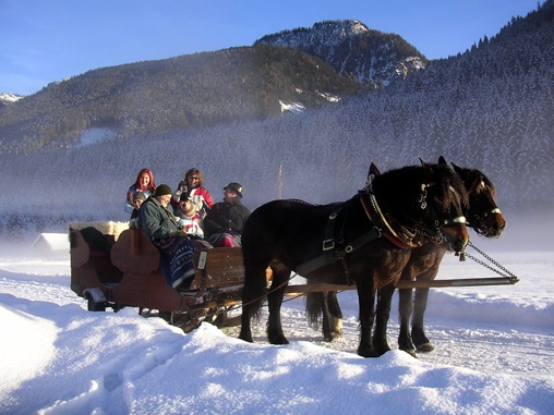 pin snow ride carriage - photo #12